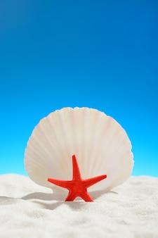 Roter seestern am strand des blauen himmels