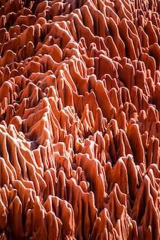 Roter tsingy. typische landschaft. madagaskar.