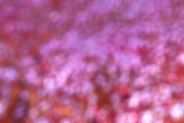 Roter und rosafarbener bokeh hintergrund