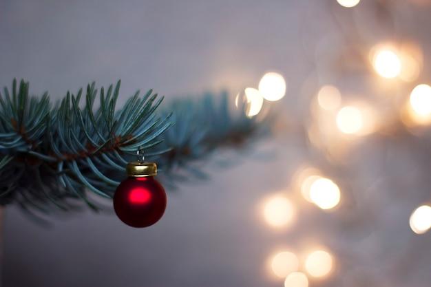Roter weihnachtsball auf dem blauen fichtenzweig mit glitzernden, unscharfen lichtern im hintergrund