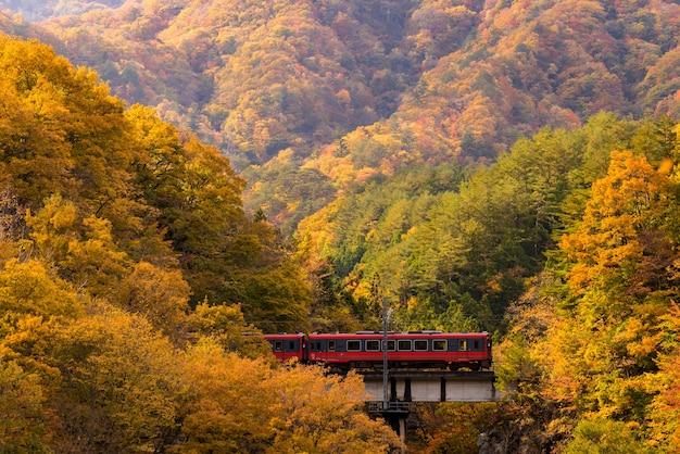 Roter zugpendler fukushima japan