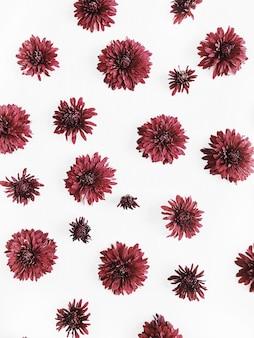 Rotes blütenknospenmuster. flache lage, ansicht von oben