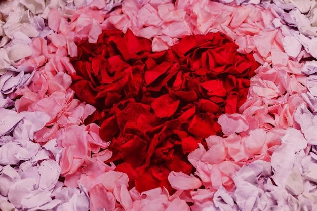 Rotes herz der blütenblätter gemacht