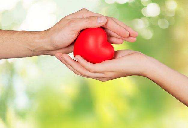 Rotes herz in den händen der frau und des mannes, auf grünem hintergrund