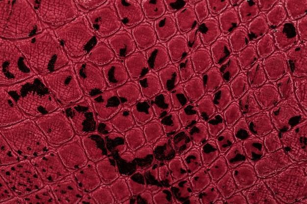 Rotes leder textur hintergrund, nahaufnahme, reptilienhaut,