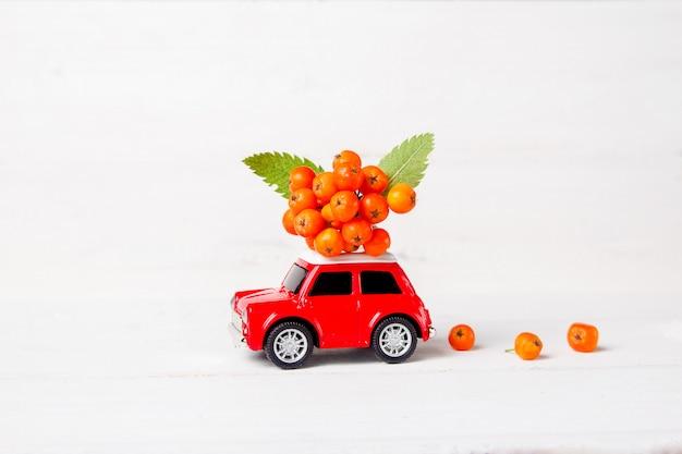 Rotes spielzeugauto mit eberesche auf dem dach auf einem weißen hölzernen