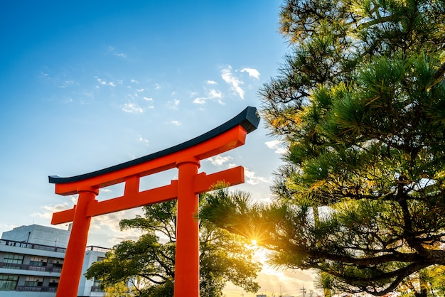 Rotes torii in fushimi inari-schrein, sonnenlicht in der dämmerung, kyoto, japan.