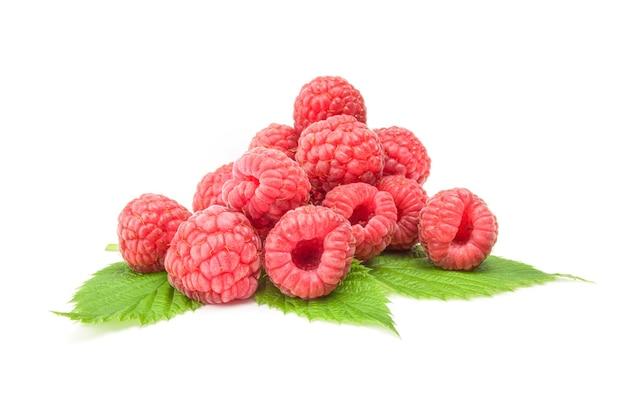 Rubusberry lokalisiert auf einem weißen hintergrundausschnitt