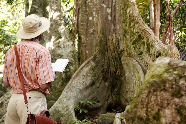 Rückansicht des kaukasischen männlichen biologen, der hut und ledertasche trägt, die dschungel im tropischen land erforscht, vor großem baum steht, notizbuch hält und notizen macht, während pflanze untersucht