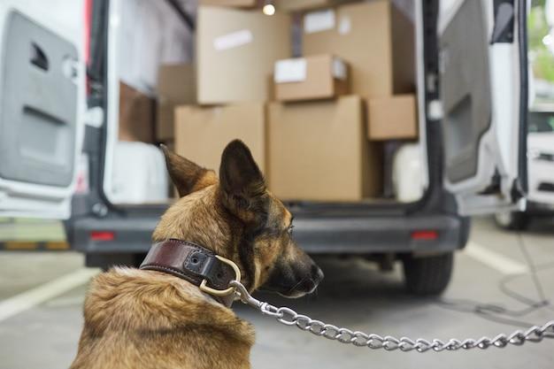 Rückansicht des militärischen schäferhundes, der die fracht im lastwagen bewacht
