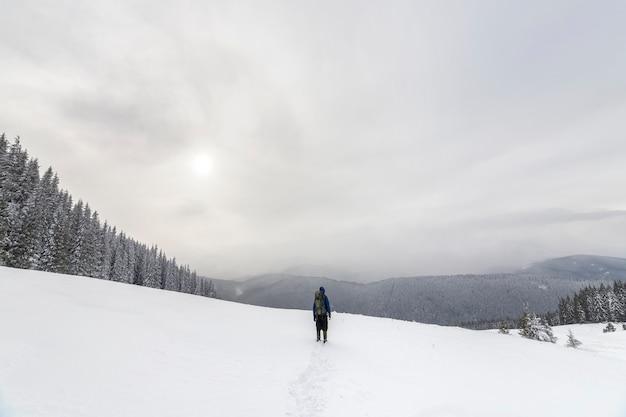 Rückansicht des touristischen wanderers in warmer kleidung mit rucksack, der auf die mit schnee bedeckten berge auf fichtenwald und bewölktem himmelskopienraumhintergrund geht.
