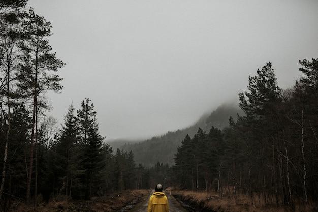 Rückansicht einer frau in einer gelben windjacke, die in einem nebligen wald steht