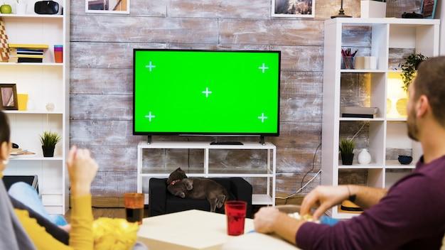 Rückansicht eines jungen paares, das auf stühlen sitzt und mit grünem bildschirm auf den fernseher schaut und popcorn isst, während die katze sie beobachtet.