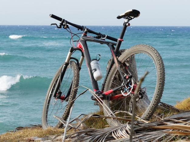 Rückansicht eines mountainbikes auf dem ozean