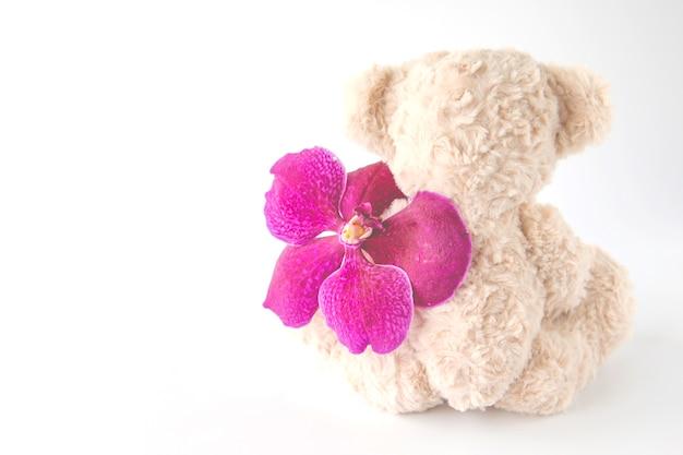 Rückansicht eines niedlichen teddybären sitzt mit einer orchideenblume