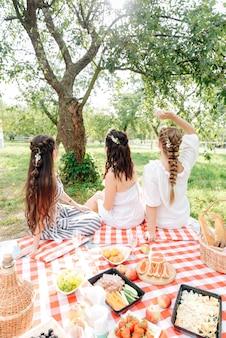 Rückansicht von frauen mit schönen frisuren auf einem picknick
