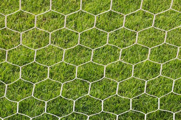 Rückseite der goal-fußball
