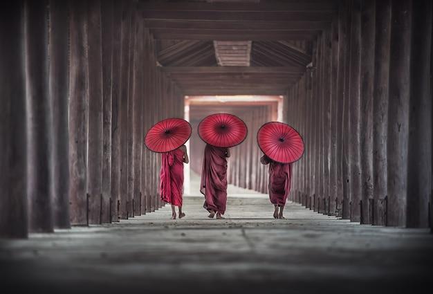 Rückseite von drei buddhistischen novizen gehen in pagode