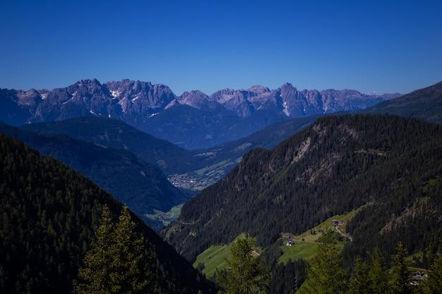 Ruhige sommeransicht der alpengebirgswiese
