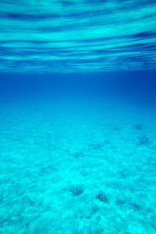 Ruhige unterwasserszene mit copyspace
