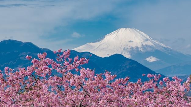 Ruhiger see fuji mountain view