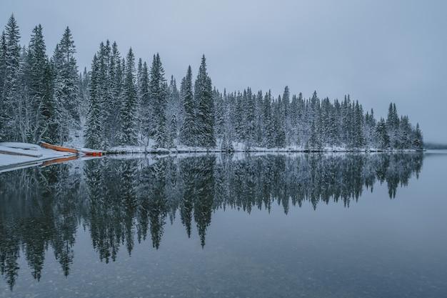 Ruhiger see mit den reflexionen der schneebedeckten bäume sichtbar, bei nebligem wetter im winter