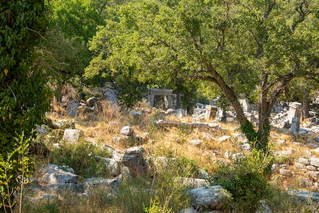 Ruinen der antiken stadt termessos ohne touristen in der nähe von antalya in der türkei