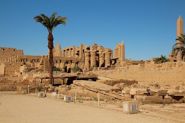 Ruinen von pharaonen und palmen in luxor.