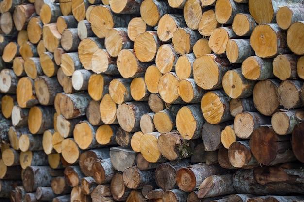 Runde brennholz in reihen angeordnet