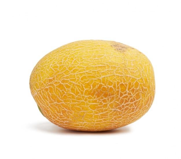 Runde gelbe reife melone lokalisiert auf weißem hintergrund, nahaufnahme
