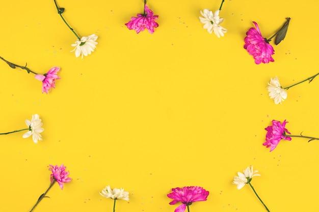 Runder rahmen aus rosa und weißen blumen, frühlingshintergrund, flacher lay und mockup-konzept auf gelbem foto