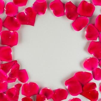 Runder rahmen von roten rosafarbenen blumenblättern