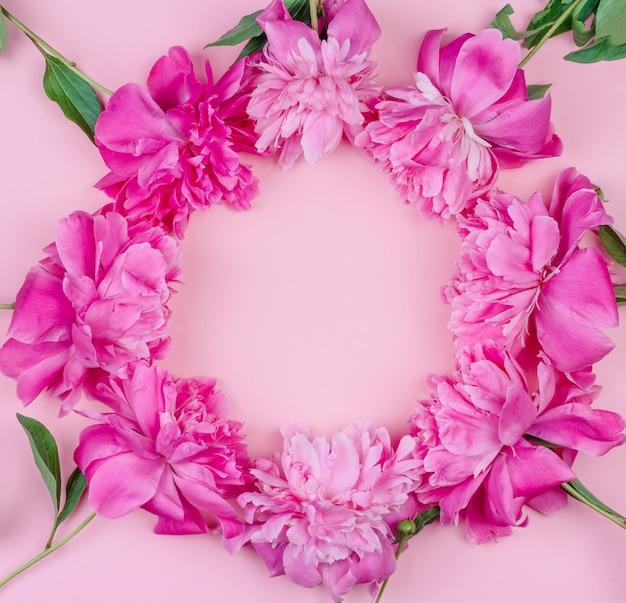 Runder rahmenblumenstrauß der rosa pfingstrose blüht nahaufnahme auf rosa