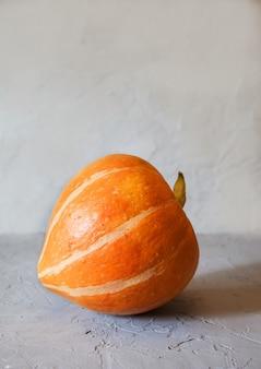 Runder roher orangenkürbis