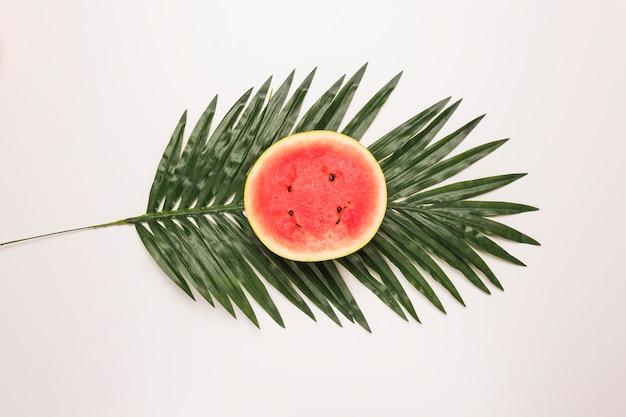 Rundes ganzes stück saftige wassermelone am palmblatt