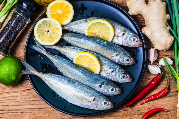 Rundfischfisch