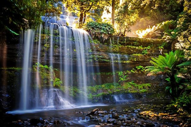 Russel falls, mt-feld-nationalpark, teil von tasmaniens wildnis-bereich, tasmanien, australien