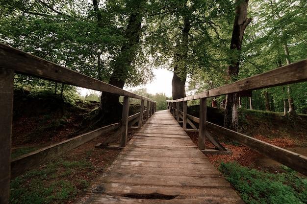 Rustikale holzbrücke im grünen wald in den karpaten