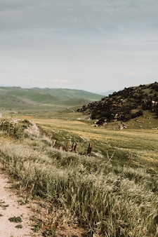 Rustikale landschaft der schönen landschaft tiefland und hügel