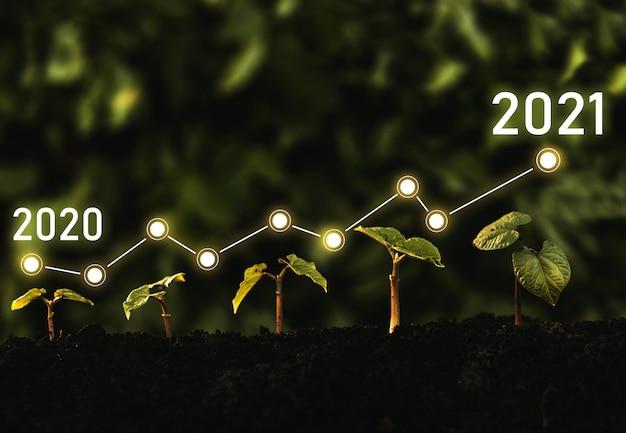Sämlinge wachsen aus dem boden mit dem wachstumsvergleichsjahr 2020 bis 2021.