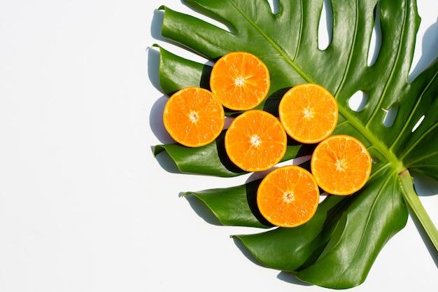Saftig und süß. frische orangenfrucht mit monstera-pflanzenblatt auf weiß