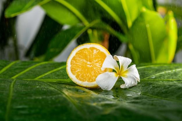 Saftige frische zitrone mit plumeriablume auf einem grünen blatt. gesunder lebensstil und spa-konzept