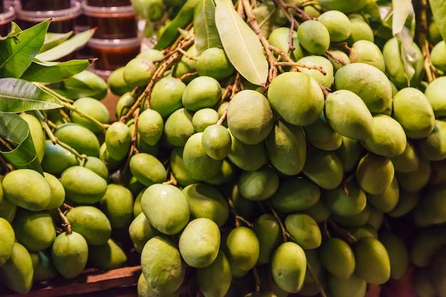 Saftige steinfrucht (steinfrucht) der frischen wilden natürlichen tropischen asiatischen grünen rohen unreifen mangos vom garten