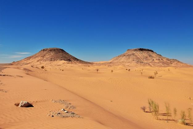 Sahara-wüste im herzen afrikas