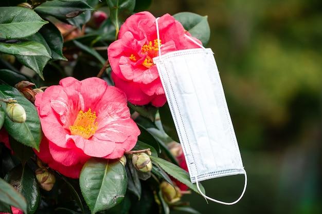 Saisonale allergien. allergische reaktion auf pollen und blüten. allergie-konzept