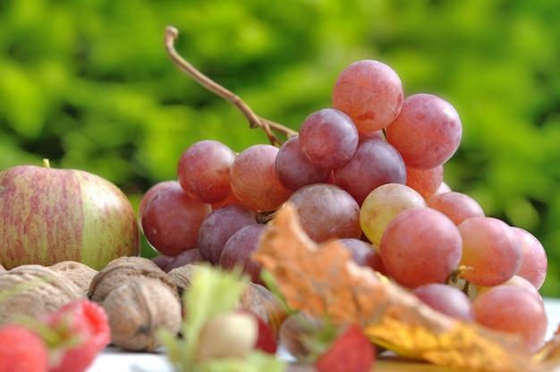 Saisonale früchte