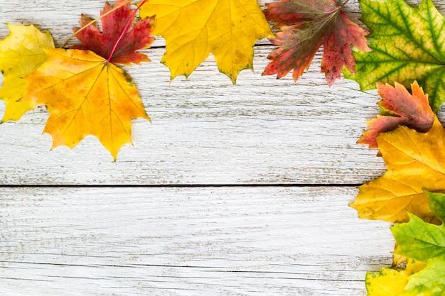 Saisonrahmen von herbstlichen ahornblättern auf weißem hölzernem hintergrund