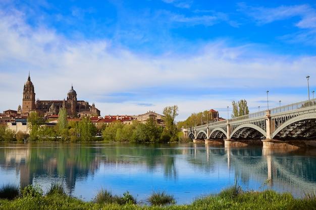 Salamanca-skyline in enrique estevan-brücke