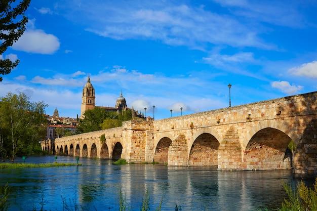 Salamanca-skyline und römische brücke auf tormes