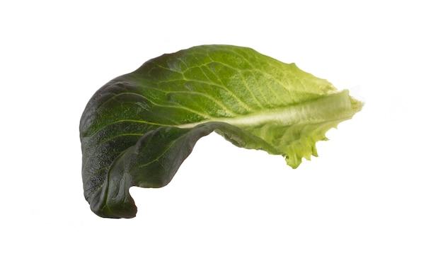 Salatblätter bio-salat isoliert